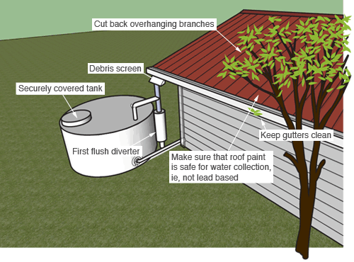 An illustration of water storage tank sitting next to a house, and the ways in which it is kept safe. The tank itself is securely covered. A tree next to the house has its branches cut back, so they do not hang over the roof guttering, and the gutters themselves are kept clean of leaves and other debris. The roof paint has been ensured to be safe for water collection, ie, not lead-based. There is a debris screen coming off the roof, over the pipe connecting the gutter to the tank. This pipe is also protected with a first flush diverter.