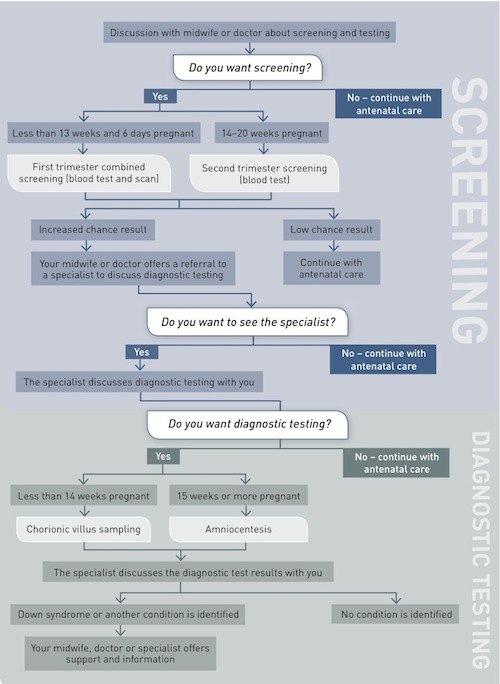 The screening and testing pathway describing when each offer to screen or test is made
