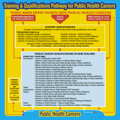 Flowchart showing training and qualifications pathways for public health careers.